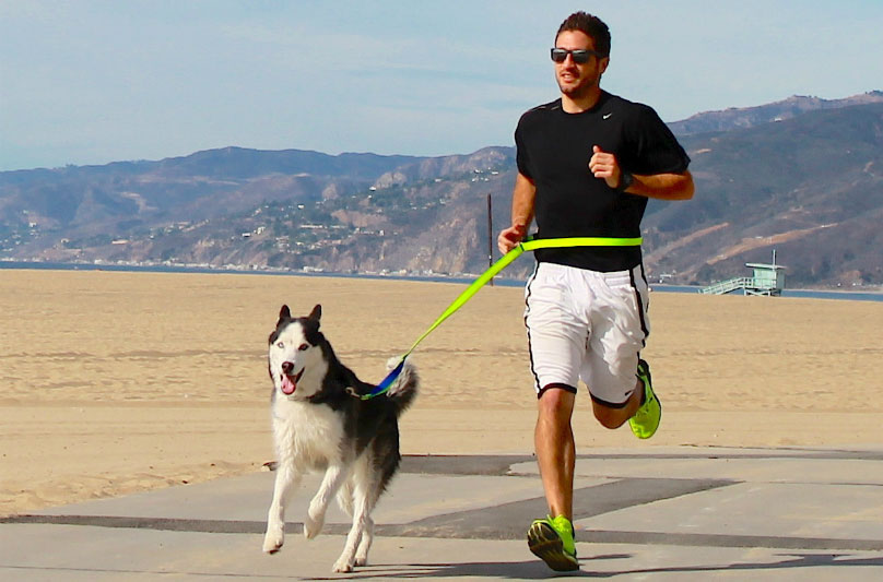 Szabad-e kutyával együtt futni?